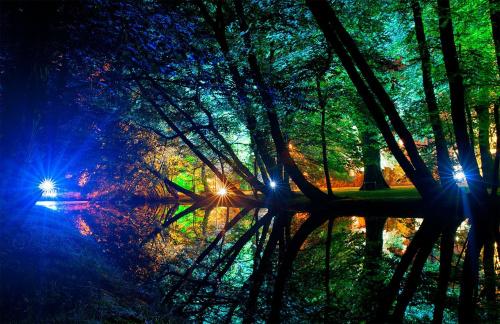 Park oliwski w wieczór mozzartiady