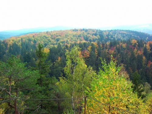złota Polska jesień #Polska #jesień #góry