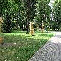Park Kuracyjny #BeskidŚląski