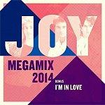 Joy - Megamix 2014 (2013)