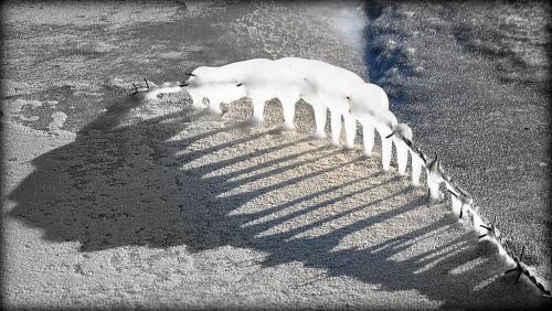 Rzeźba z lodu i drutu