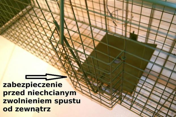 pułapka na kunę,kota,łasicę i szczura opadowa